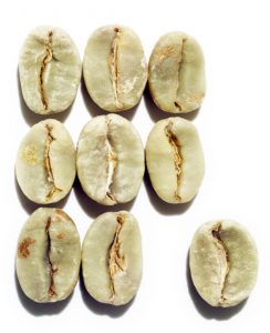 Grüne Kaffebohne